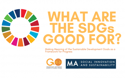 What are the SDGs Good For ?